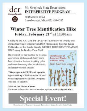 Winter Tree Identification Hike @ Mount Greylock State Reservation | Cheshire | Massachusetts | United States